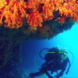 diving-center-bosa_01
